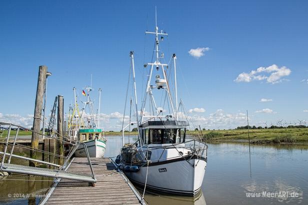 Neuenfelder Hafen in Dithmarschen