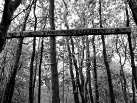 Trail Aufmacher