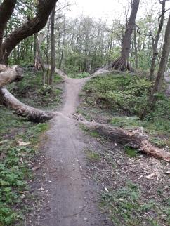 Trail der schönste teul (1)