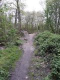 Trail es geht wieder zurück (1)