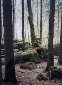 Mystik Buchtipp (2)