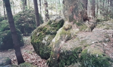 Mystik Buchtipp (4)